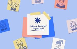 why using gravatar