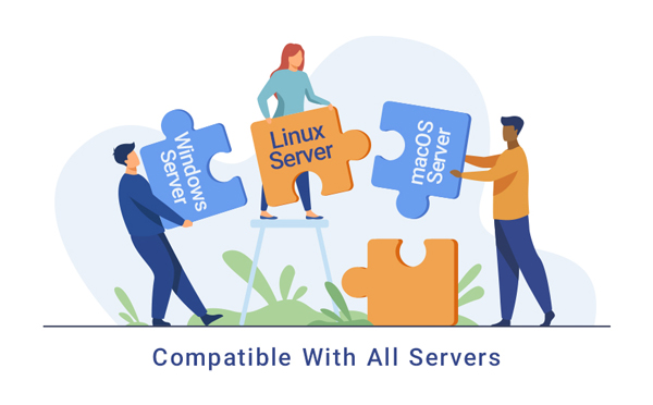 compatible with all servers