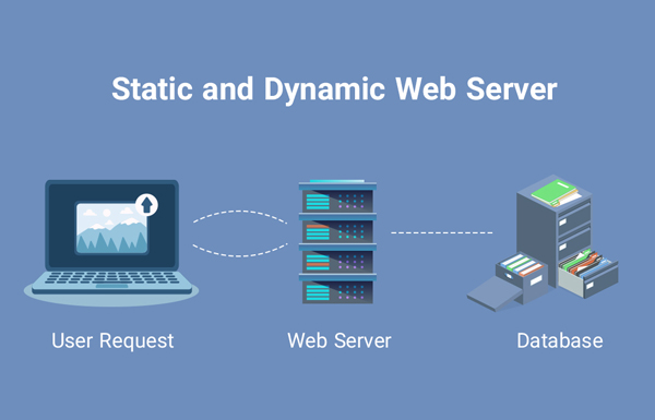 static and dynamic web server