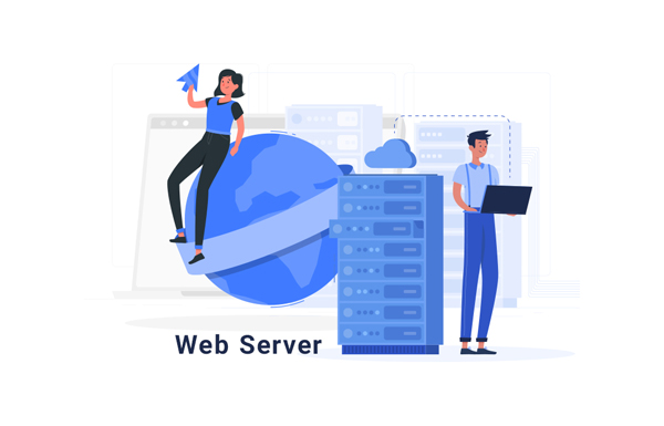 what do you mean by web server