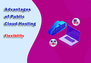 Advantages of Public Cloud Hosting - Flexibility