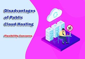 Disadvantages of Public Cloud Hosting - Flexibility Concerns